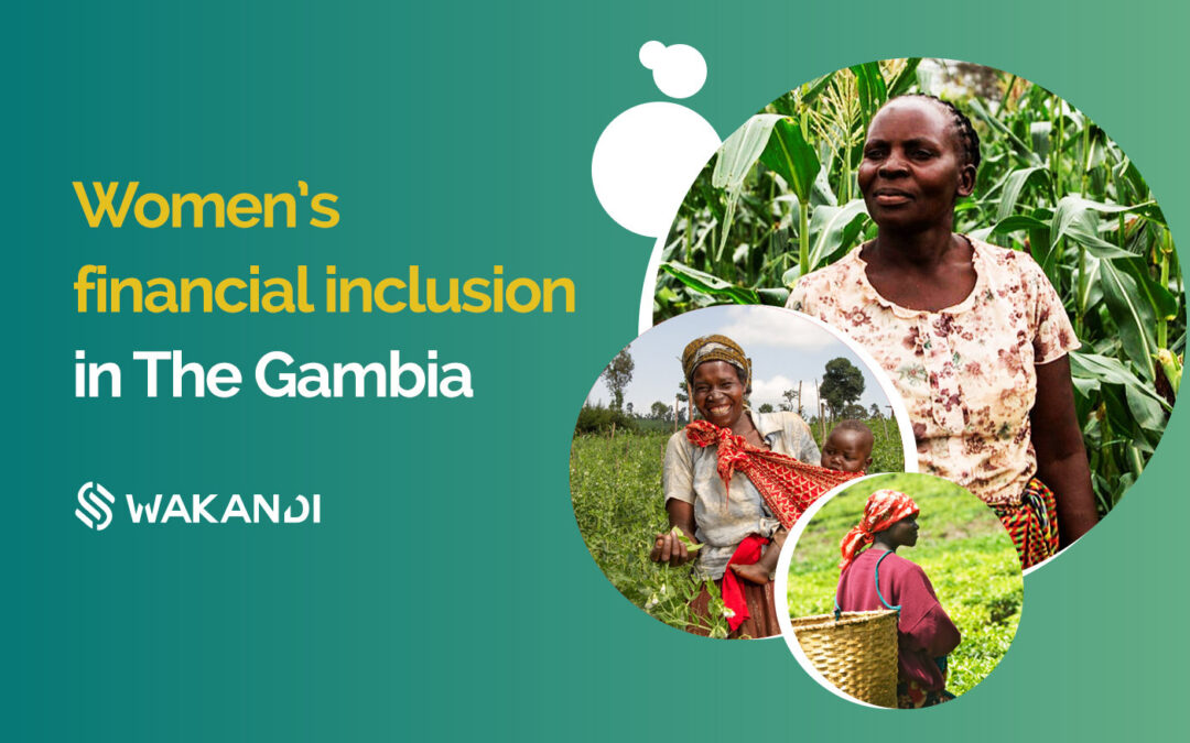 Women's financial inclusion in The Gambia: Challenges and solutions
