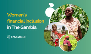 Women's financial inclusion in The Gambia