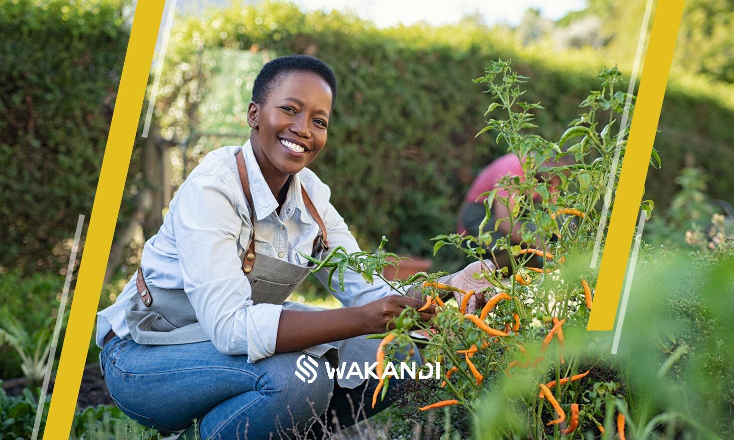 Empowered women and their role in cooperative societies